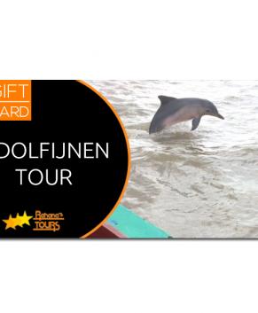 Dolfijnen tour